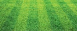 лужайки из газонной решетки
